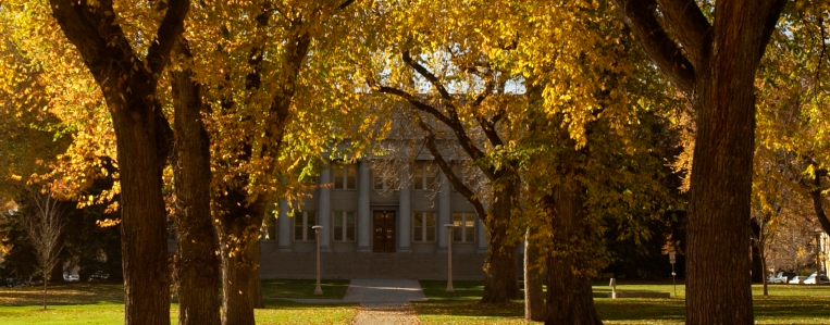 CSU oval in the fall